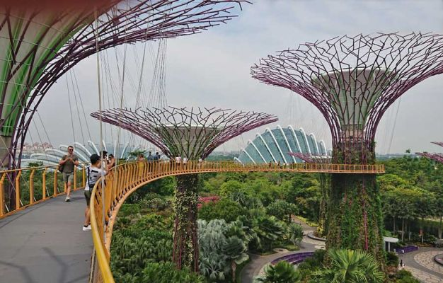Supertrees Skyway, Gardens by the Bay, Singapore
